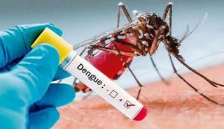 कोरोना संक्रमितमा डेंगु  देखिँदै, सावधानी आवश्यक